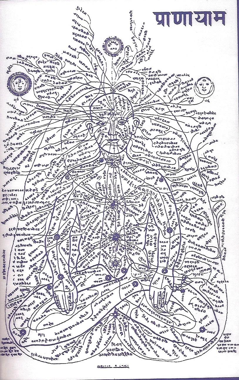 Map of nadis